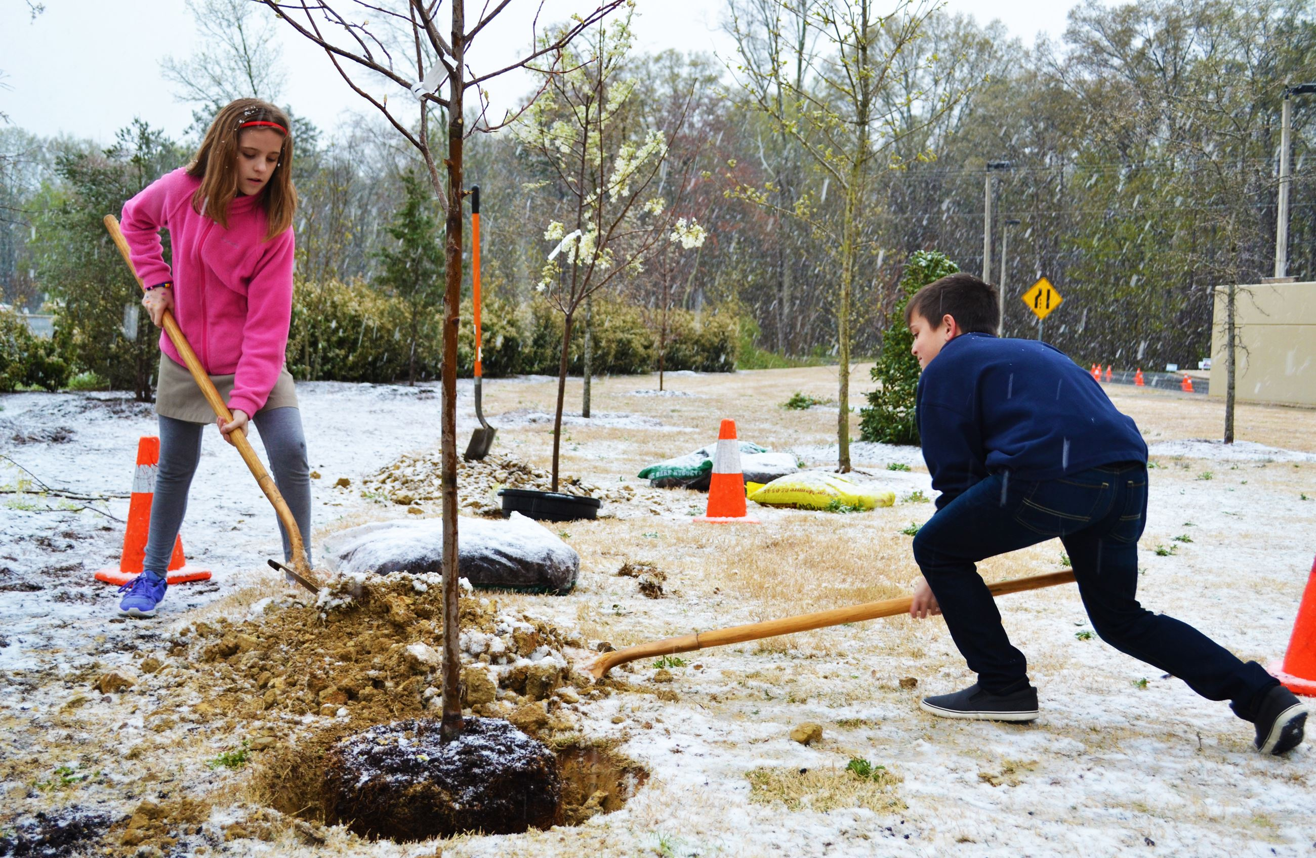 Kids help plant a tree in the snow